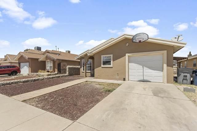 11921 Braveheart Avenue, El Paso, TX 79936 (MLS #845022) :: Summus Realty