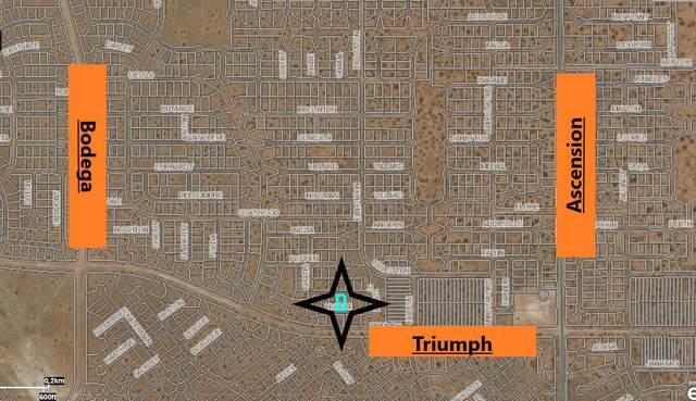 5 Husum Drive, El Paso, TX 79938 (MLS #845064) :: Summus Realty