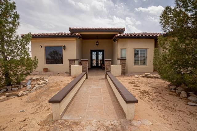 15280 N Horizon Boulevard, Clint, TX 79836 (MLS #845082) :: The Purple House Real Estate Group