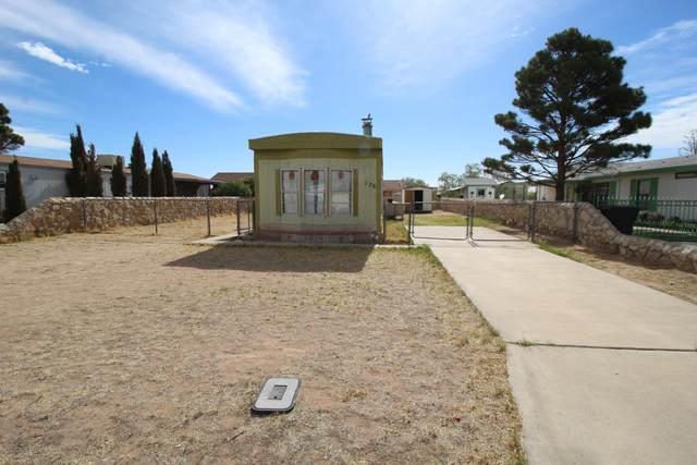108 Sahuaro Drive, Horizon City, TX 79928 (MLS #845107) :: The Purple House Real Estate Group