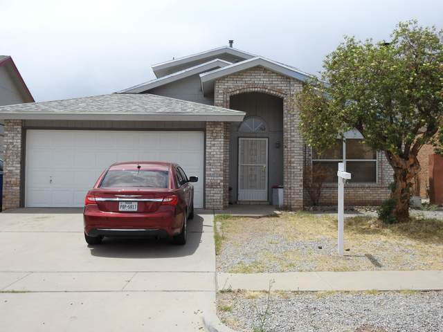 10925 Ted Williams Place, El Paso, TX 79934 (MLS #845214) :: Summus Realty