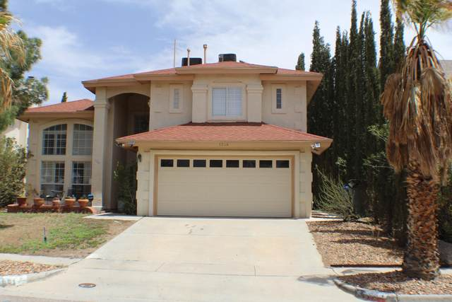 1344 Desert Jewel Dr, El Paso, TX 79912 (MLS #845233) :: Summus Realty