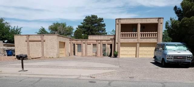10821-23 Ivanhoe Drive, El Paso, TX 79936 (MLS #845258) :: The Purple House Real Estate Group