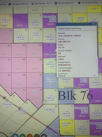 Block 76 Township Five Sec 28 Track 30, Sierra Blanca, TX 79851 (MLS #845343) :: The Matt Rice Group