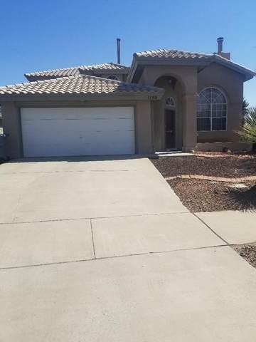 1130 West Bend Lane, El Paso, TX 79912 (MLS #845367) :: Summus Realty