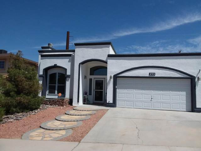 253 Stoneheath Ct Court, El Paso, TX 79932 (MLS #845377) :: Summus Realty