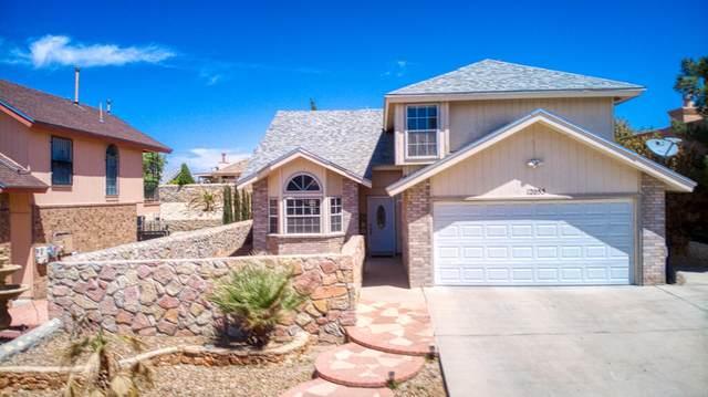12055 Chato Villa Drive, El Paso, TX 79936 (MLS #845379) :: Summus Realty