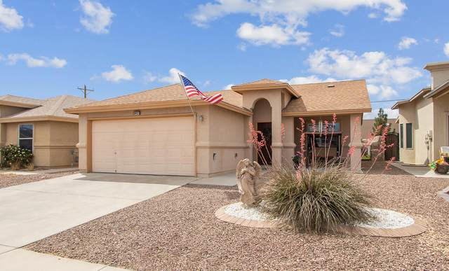 3437 Scarlet Point Drive, El Paso, TX 79938 (MLS #845389) :: Jackie Stevens Real Estate Group brokered by eXp Realty
