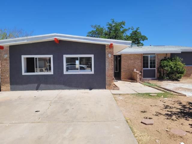 10624 Palomino Street, El Paso, TX 79924 (MLS #845479) :: Jackie Stevens Real Estate Group brokered by eXp Realty
