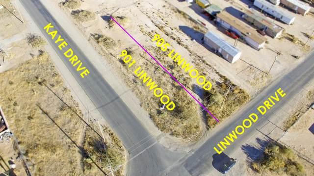 905 Linwood Drive, El Paso, TX 79928 (MLS #845505) :: Mario Ayala Real Estate Group
