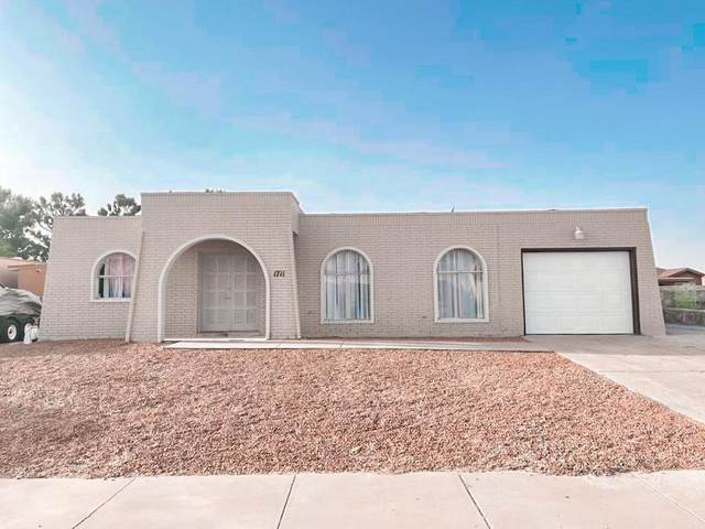 1711 Opossum Circle, Horizon City, TX 79928 (MLS #845536) :: The Purple House Real Estate Group