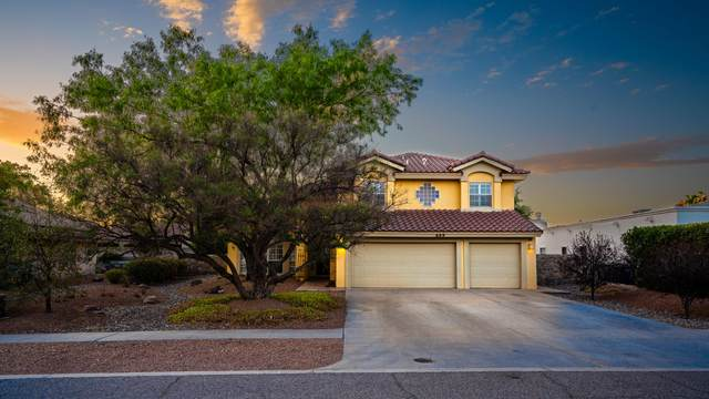 609 Coral Willow Drive, El Paso, TX 79922 (MLS #845712) :: The Purple House Real Estate Group
