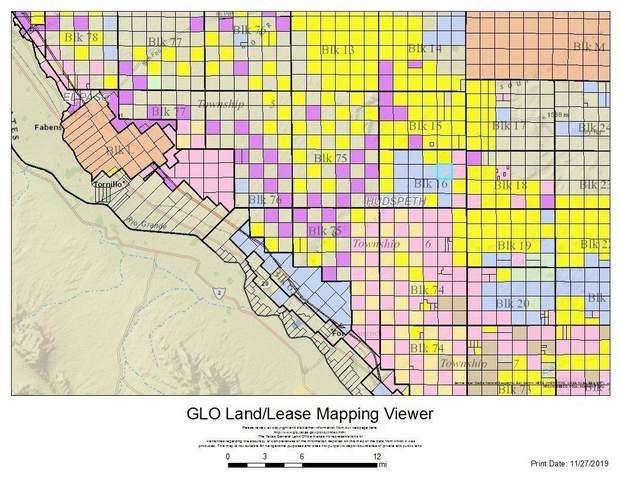 16 SEC 16 Pls New Socorro Hts Lot 3-4, Sierra Blanca, TX 79851 (MLS #845719) :: The Matt Rice Group