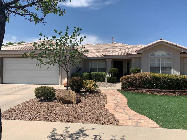 6737 Isla Del Rey Drive, El Paso, TX 79912 (MLS #845772) :: The Purple House Real Estate Group