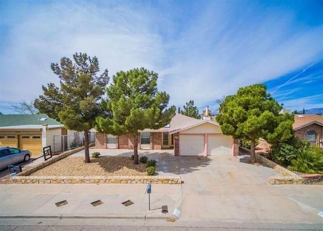 2129 Sea Gull Drive, El Paso, TX 79936 (MLS #845816) :: Mario Ayala Real Estate Group