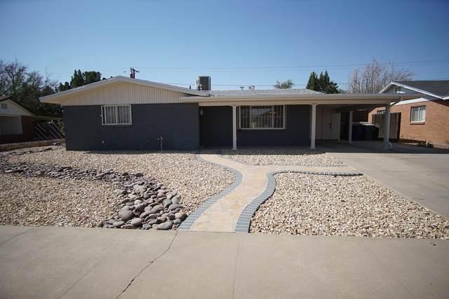 9832 Heather Avenue, El Paso, TX 79925 (MLS #845830) :: The Matt Rice Group