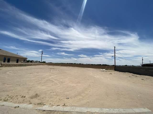 350 Burkett Drive, Clint, TX 79836 (MLS #845836) :: The Matt Rice Group