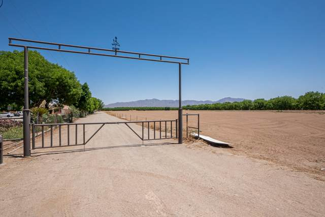2760 S Highway 28, Anthony, NM 88021 (MLS #845853) :: The Purple House Real Estate Group