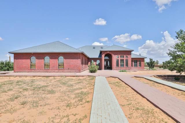 13129 Santa Fe Trail, El Paso, TX 79938 (MLS #845902) :: Preferred Closing Specialists