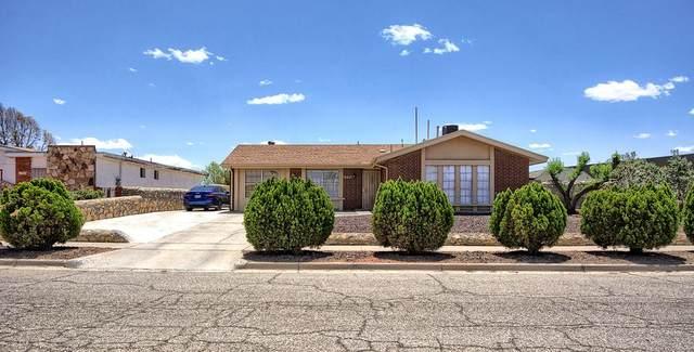 1704 Opossum Circle, Horizon City, TX 79928 (MLS #845960) :: Mario Ayala Real Estate Group