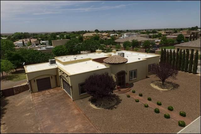 5513 Milray Drive, El Paso, TX 79932 (MLS #845964) :: Mario Ayala Real Estate Group