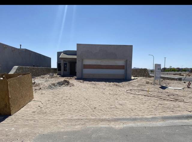 2999 Don Buck Drive, Las Cruces, NM 88011 (MLS #846020) :: Jackie Stevens Real Estate Group