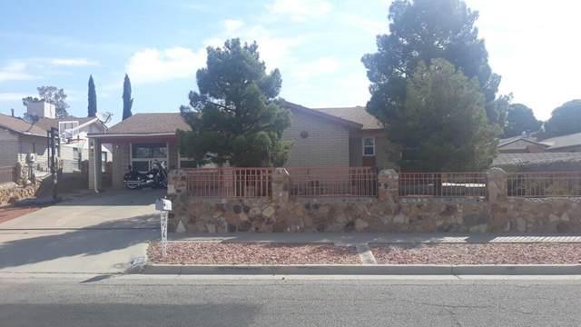 740 Nita Fay Drive, El Paso, TX 79912 (MLS #846209) :: The Matt Rice Group