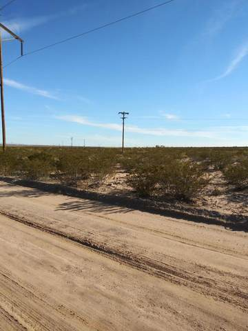 000 County Road A-074 Road, Chaparral, NM 88081 (MLS #846259) :: The Matt Rice Group