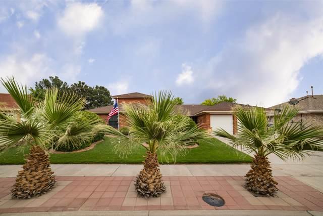 1820 Pueblo Alegre Drive, El Paso, TX 79936 (MLS #846277) :: The Matt Rice Group