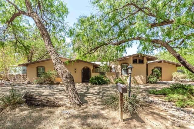817 Royal Oak Court, El Paso, TX 79932 (MLS #846311) :: The Purple House Real Estate Group
