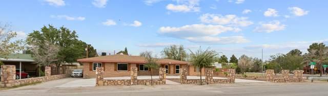 300 Rose Lane, El Paso, TX 79915 (MLS #846313) :: Red Yucca Group