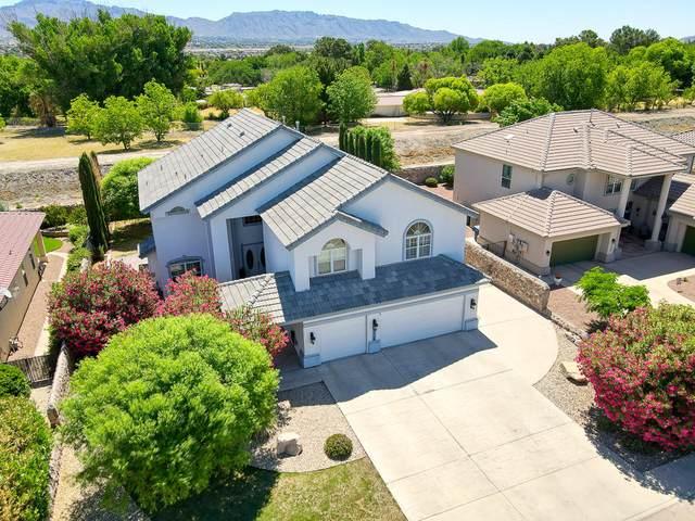 5528 Last Waltz Drive, El Paso, TX 79932 (MLS #846367) :: The Purple House Real Estate Group