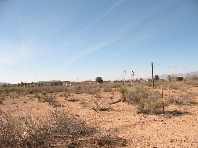 Lot 66 Byrum Rd/7.63 Acres, Chaparral, NM 88081 (MLS #846408) :: Preferred Closing Specialists