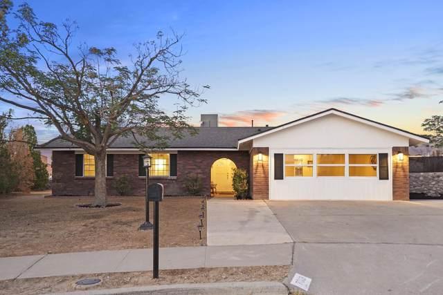 7013 Casa Loma Circle, El Paso, TX 79912 (MLS #846484) :: Jackie Stevens Real Estate Group