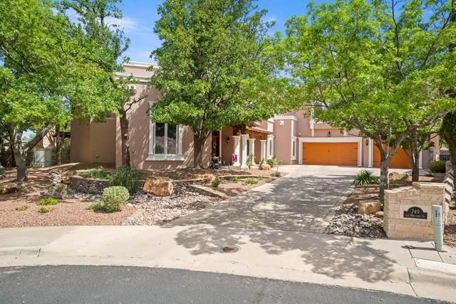 749 Los Miradores Drive, El Paso, TX 79912 (MLS #846495) :: Red Yucca Group
