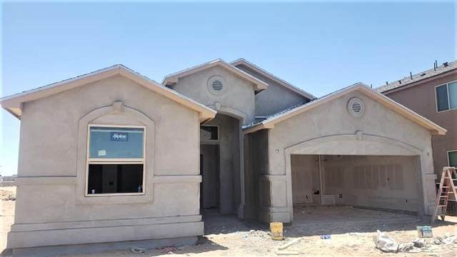 12324 Desert Path Court, El Paso, TX 79938 (MLS #846528) :: The Matt Rice Group