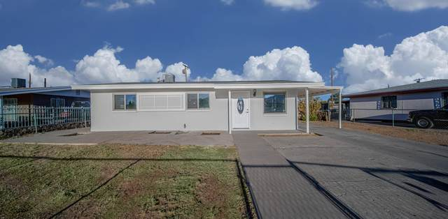 10324 Newport Drive, El Paso, TX 79924 (MLS #846545) :: Red Yucca Group