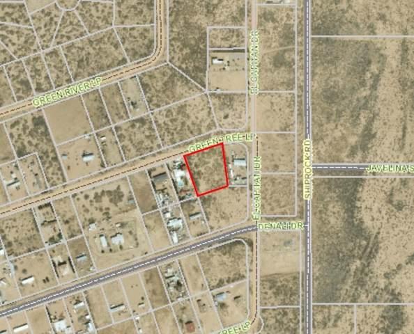 0 Green Tree Loop, Chaparral, NM 88081 (MLS #846681) :: Preferred Closing Specialists
