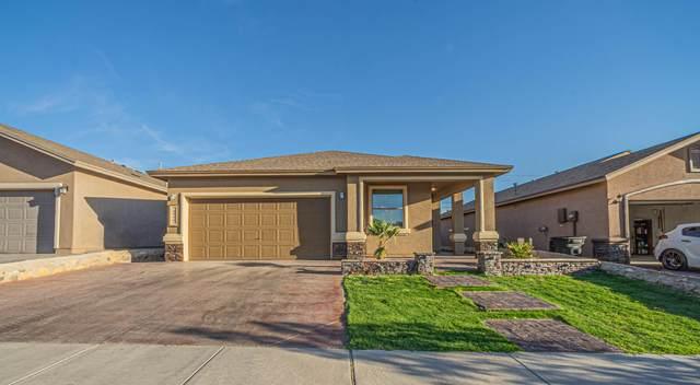 13144 Saker Drive, Horizon City, TX 79928 (MLS #846834) :: Summus Realty