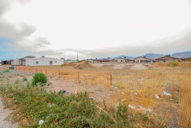 2824 Girl Scout Lane, Sunland Park, NM 88063 (MLS #846859) :: Preferred Closing Specialists