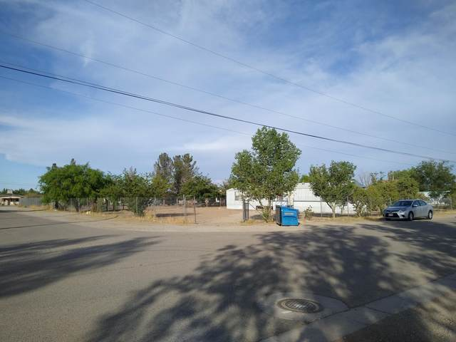 13341 Tascate Drive, San Elizario, TX 79849 (MLS #846922) :: The Matt Rice Group