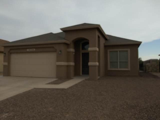 14356 Alma Point Drive, El Paso, TX 79938 (MLS #846988) :: Mario Ayala Real Estate Group