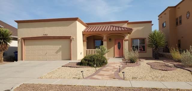 7392 Camino Del Sol Drive, El Paso, TX 79911 (MLS #847117) :: The Matt Rice Group