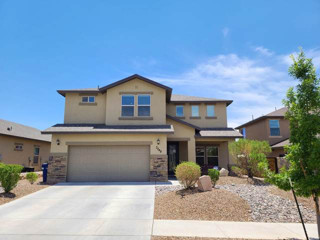 7348 Meadow Sage Drive, El Paso, TX 79911 (MLS #847122) :: Jackie Stevens Real Estate Group