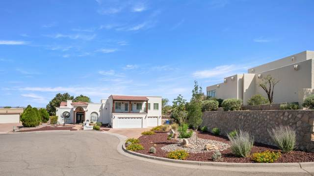 508 Mallory Court, El Paso, TX 79912 (MLS #847170) :: Mario Ayala Real Estate Group