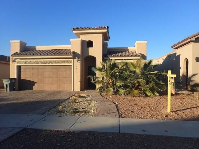 14629 Christian Castle, El Paso, TX 79938 (MLS #847174) :: Mario Ayala Real Estate Group