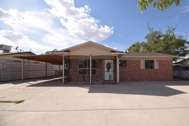 5641 Edingburd Dr Drive, El Paso, TX 79924 (MLS #847185) :: Jackie Stevens Real Estate Group