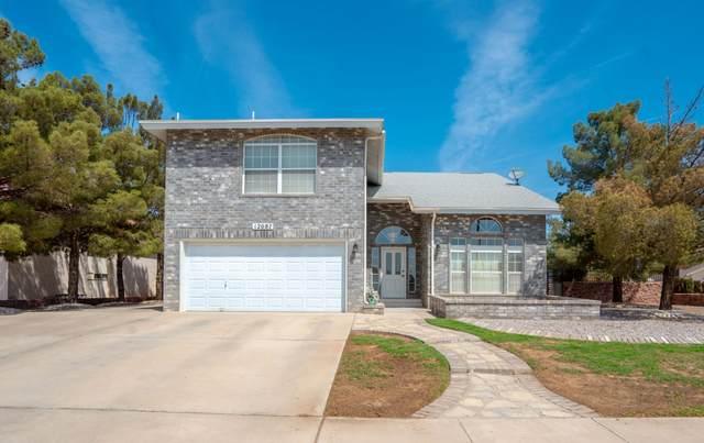12087 Pueblo Laguna Drive, El Paso, TX 79936 (MLS #847186) :: The Matt Rice Group