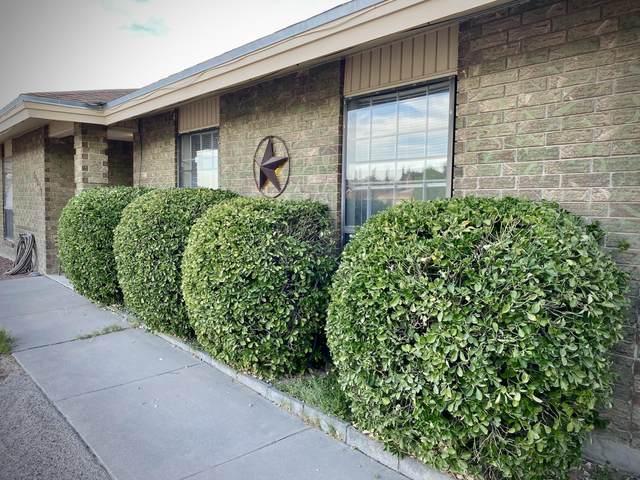 19031 Armington Drive, Horizon City, TX 79928 (MLS #847203) :: Mario Ayala Real Estate Group