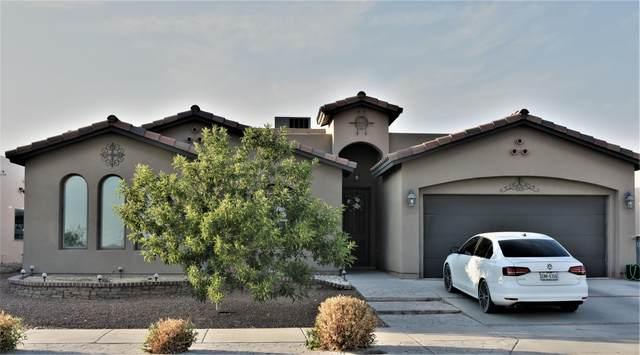 14513 Holly Springs Avenue, El Paso, TX 79938 (MLS #847206) :: Mario Ayala Real Estate Group